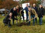 Schleswig-Holstein bekommt einen neuen Wald