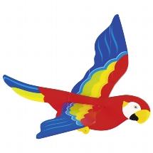 Parrot, swinging animal