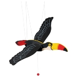 Toucan, swinging animal