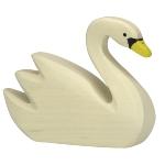 Swan, swimming