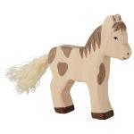 Foal, standing, dappled